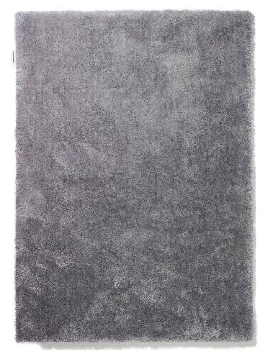 Innenteppich Colourcourage in Lila Rug Size: 200 x 300cm