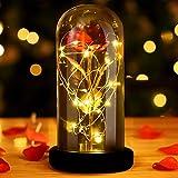 INAROCK La Bella y la Bestia Rose, Valentine Red Silk Rose en Dome Glass con 20 LED Fairy Lights String, Romántica Sorpresa para el Día de San Valentín, Día de la Madre, Aniversario de Bodas, Navidad
