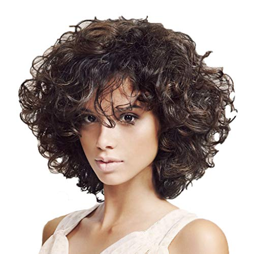 The Best Gift!!! Cathy Clara Brazilian Women Hair Wig Women Black Short Afro Curly Wigs 34cm,Black African American Hair Wig Natural Looking Wigs Heat Resistant