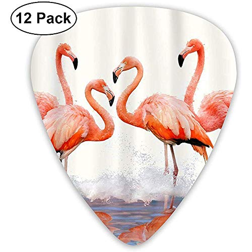 12 Pack Flamingo douchegordijn Gitaar Picks Complete Gift Set voor Gitarist