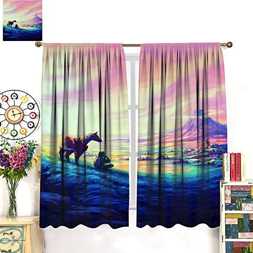 Petpany Hairu Warrior Zelda Age of Disaster Game Wear cortina de impresión tipo barra de 107 x 160 cm, hermosa decoración de habitación y ajustes convenientes. Cortinas de dormitorio