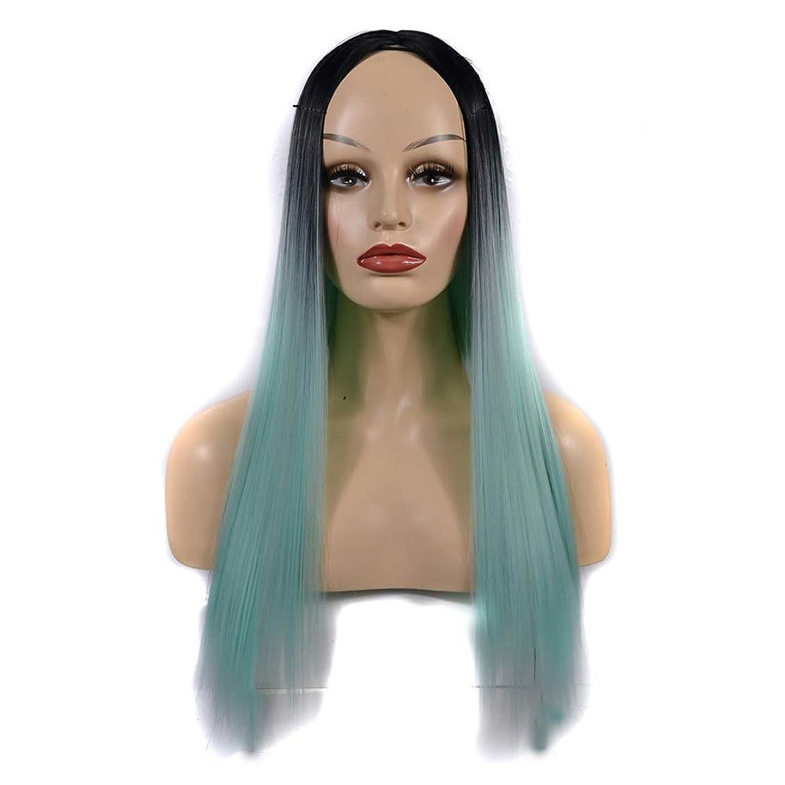 スイス人胆嚢割合かつら 女性のための合成かつら黒髪の根緑の長いストレートの髪自然なパーティー用ウィッグ (色 : オレンジ, サイズ : 60cm)
