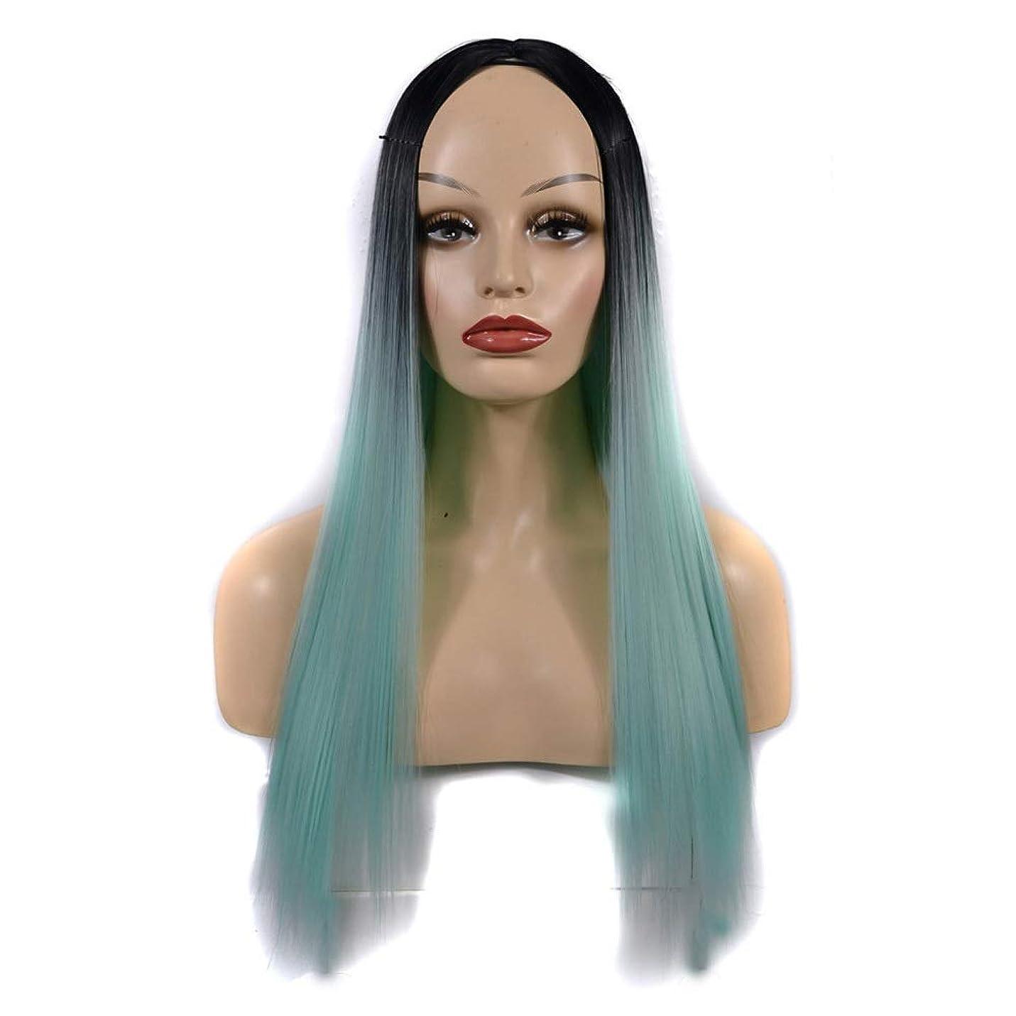 ラウズ曖昧なこんにちはHOHYLLYA 女性のための合成かつら黒髪の根緑の長いストレートの髪自然なパーティー用ウィッグ (色 : オレンジ, サイズ : 60cm)