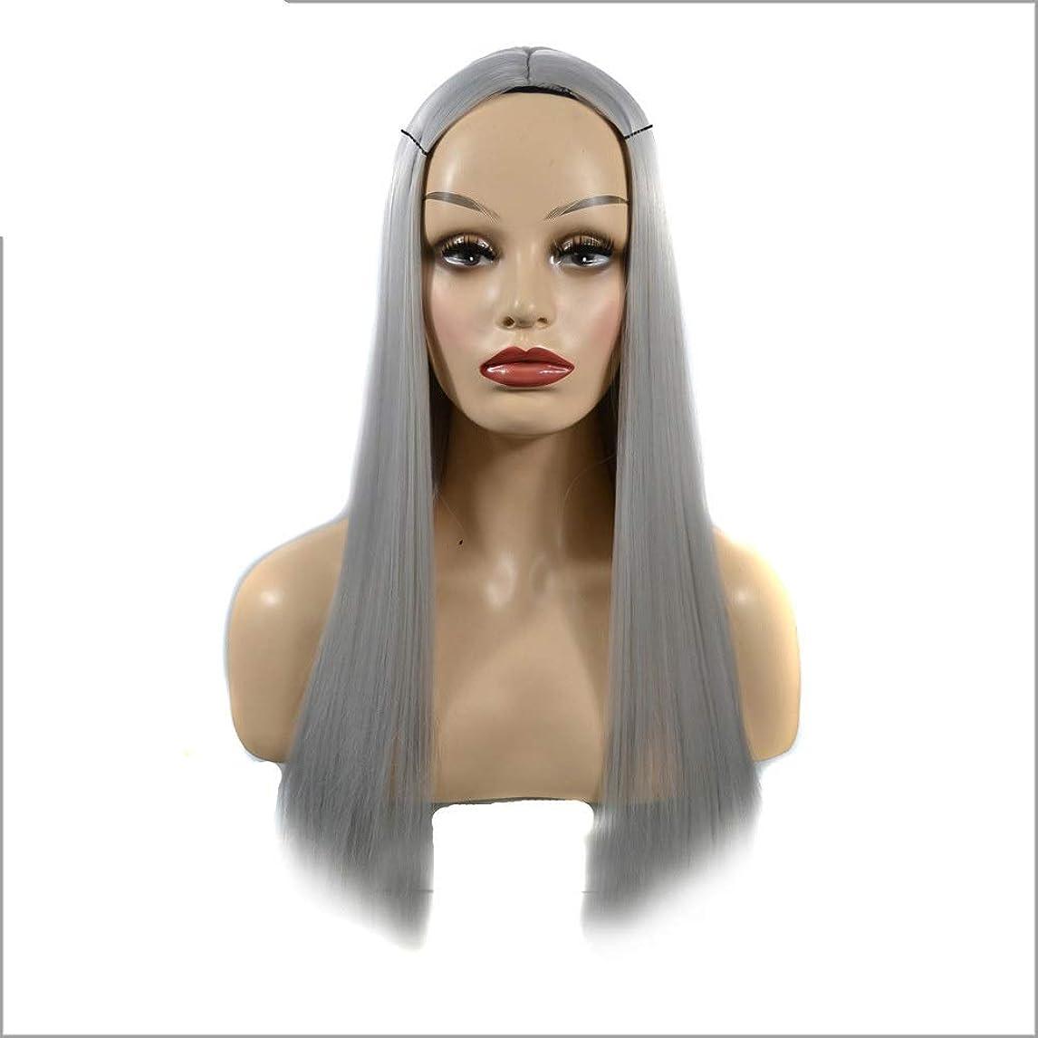 水っぽいローマ人小人Vergeania オンブルシルバーグレーウィッグロングストレート合成かつら女性用耐熱フルウィッグパーティーウィッグ (色 : Silver Grey, サイズ : 60cm)