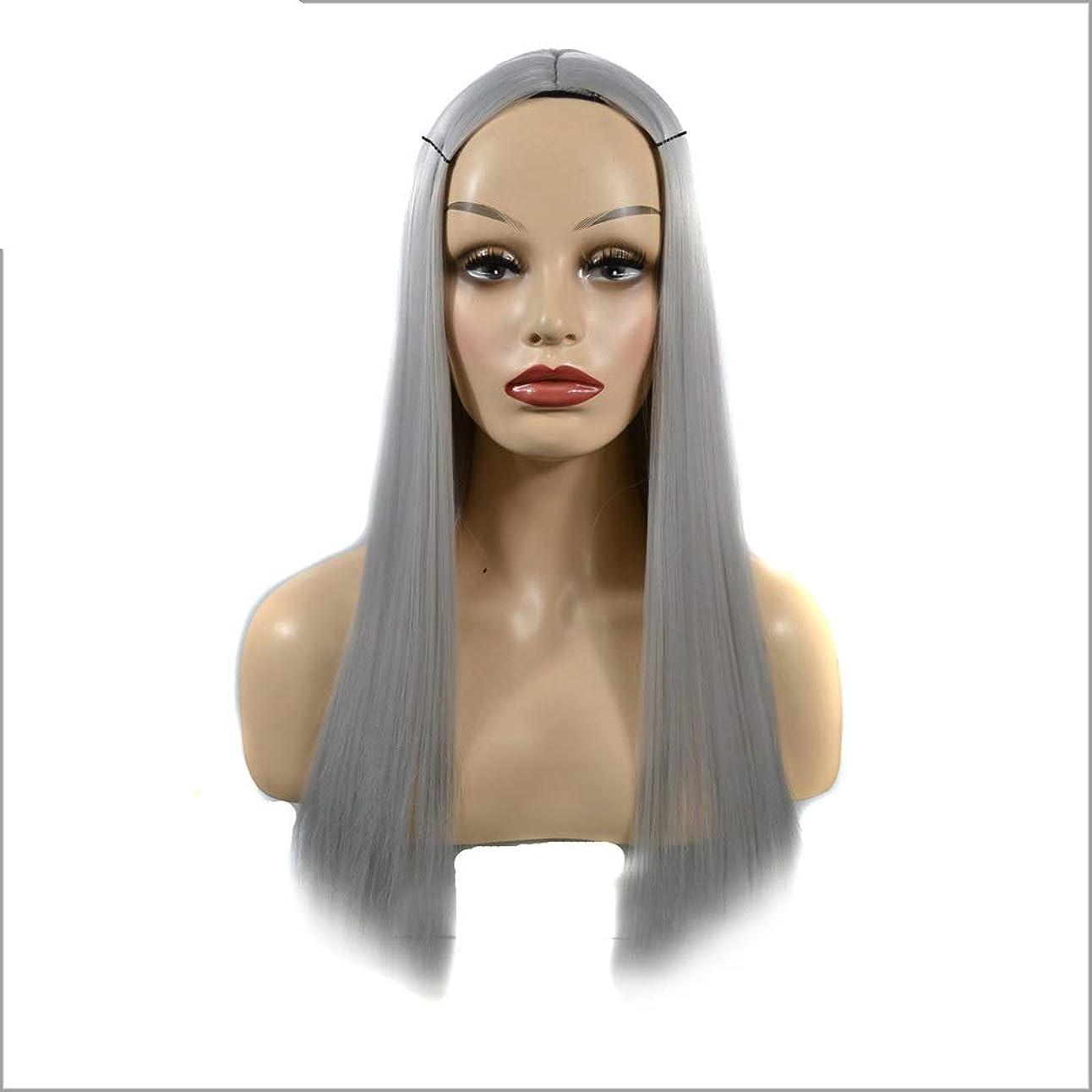 殺しますにじみ出る手YESONEEP オンブルシルバーグレーウィッグロングストレート合成かつら女性用耐熱フルウィッグパーティーウィッグ (Color : Silver Grey, サイズ : 60cm)