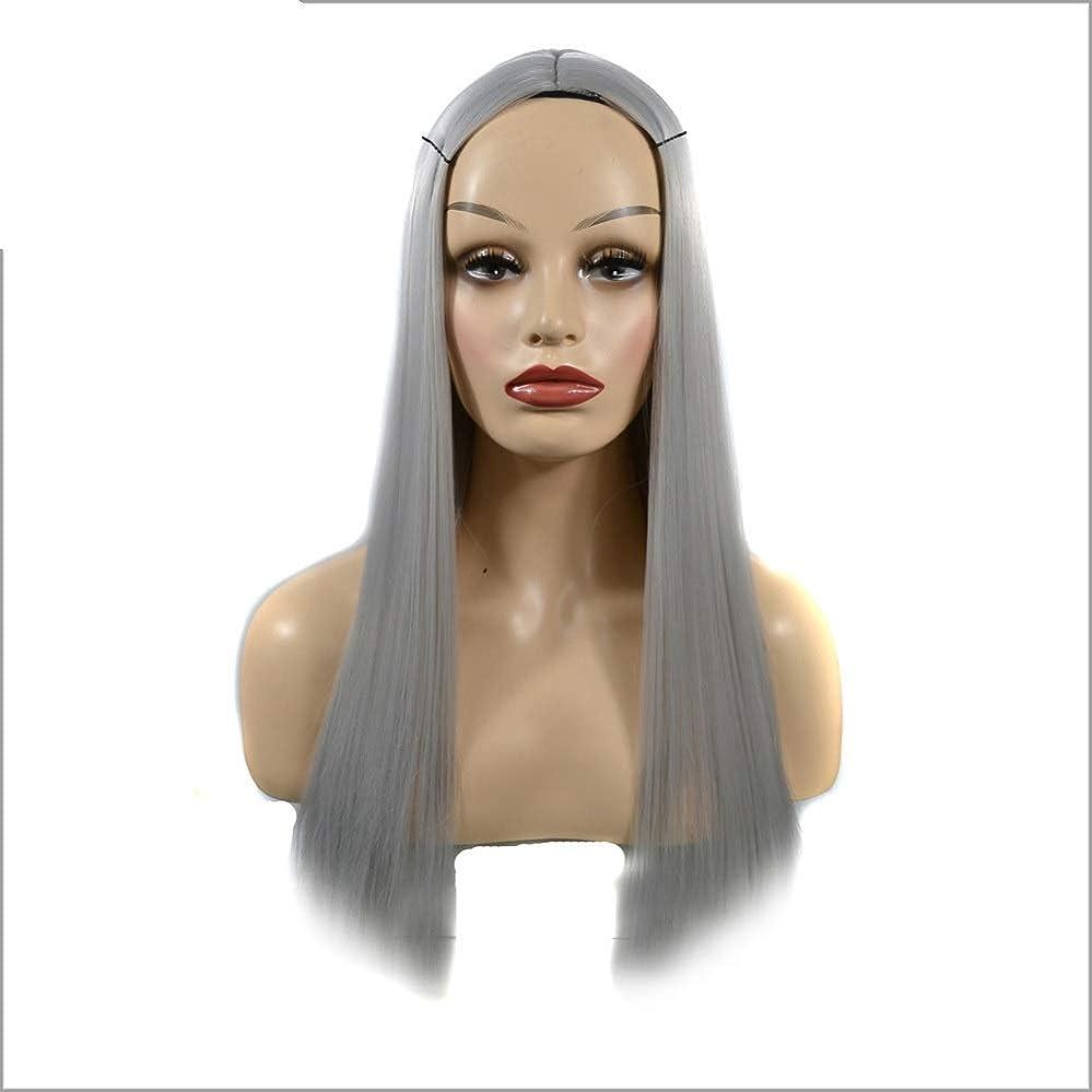 名誉ホップ抱擁YESONEEP オンブルシルバーグレーウィッグロングストレート合成かつら女性用耐熱フルウィッグパーティーウィッグ (Color : Silver Grey, サイズ : 60cm)
