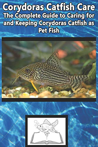 Corydoras Catfish Care: The Complete Guide to Caring for and Keeping Corydoras Catfish as Pet Fish