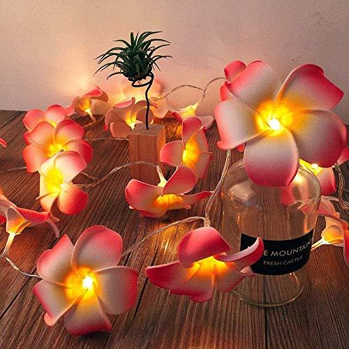 Artificial Plumeria String Lights, Foam Frangipani Led Fairy Lights Battery Operated Egg Flower Lights for Bedroom Home Wedding Hawaiian Beach Party Hair Decor (Frangipani-Pink, 19.7FT/40LED)