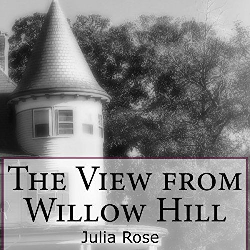 The View from Willow Hill cover art