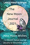 The New Moon Journal 2021: LARGE PRINT on CREAM paper - 6' x 9' dated, 12-month New Moon Journal for Manifesting New Moon Wishes & Intentions for 2021; Teal Galaxy Cover, Pink Moon & Gothic Owl