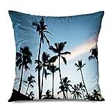 Sabalone Throw Pillow Cover Square 18x18 República Dominicana Iluminado Hotel Sundown Beach Silhouette Sunset Reposo Oscuro con Parques Naturales Funda de Almohada con Cremallera al Aire Libre
