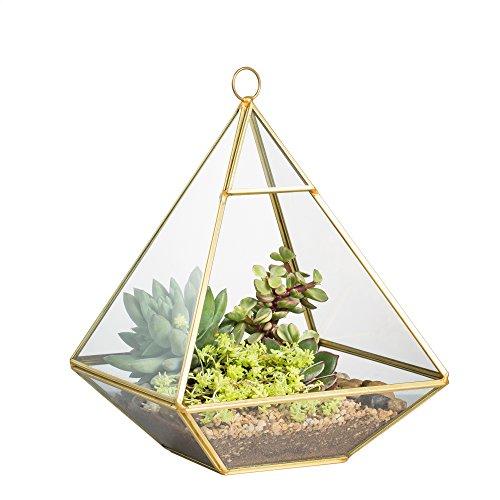NCYP Wandhalterung Hängende Pyramide Glas Geometrisches Terrarium Fensterbank Tischplatte Sukkulenter Pflanzer Moos Display Box Vase Blumentopf 14,9 x 14,9 x 20 cm Gold (keine Pflanzen enthalten)