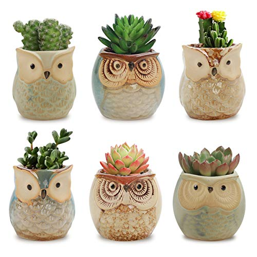 JMINTG 6 in Set 2.5 Inch Owl Pot Ceramic Flowing Glaze Base Serial Set Succulent Plant Pot with A Hole