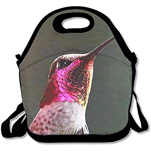 Lunch Tote Bella Ruby Throated Hummingbird bedrukte tas voor het vervoer van dode tas met ritssluiting koelbox voor picknicks reizen
