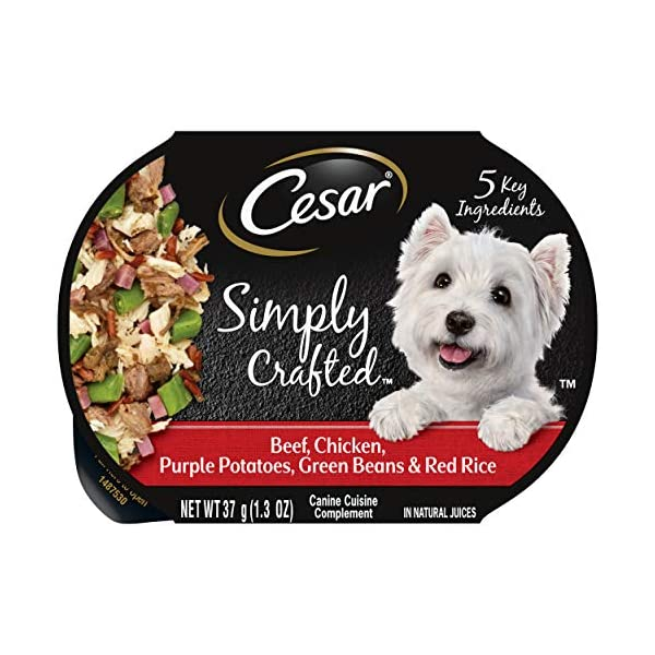 CESAR SIMPLY CRAFTED Meal Topper Wet Dog Food, Pack of 10