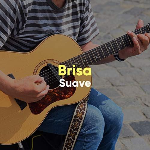Relajacion y Guitarra Acustica