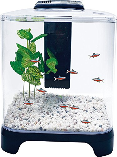 Penn Plax Betta Fish Tank Aquarium Kit with LED Light & Internal Filter Desktop Size, 1.5 gallon