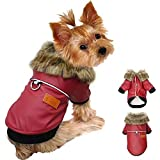 Didog Leather Dog Jacket Waterproof Puppy Winter Coat with Fur Collar,PU Leather Motorcycle Punk Style for Small Dogs Yorkshire,Boston Terrier,Chihuahua