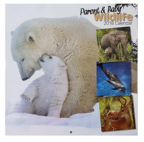 2018 Parent & Baby Wildlife Square Muur Kalender 16 Maand Wilde Dieren Vogels Zoogdieren Thuis Kantoor Kerstmis Verjaardagscadeau (Polar Bear Cover)