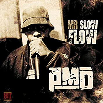 Mr. Slow Flow