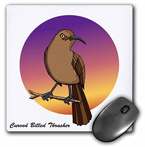 3dRose Mark Grace GRACEVISIONS Birds - Birds Curve Billed Thrasher 2 on White - Mousepad (mp_25548_1)