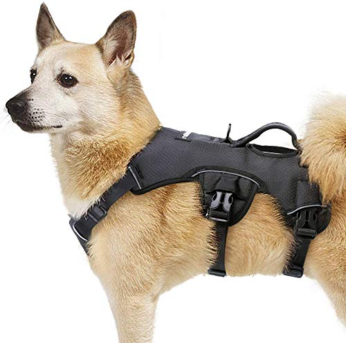 rabbitgoo Escape Proof Dog Harness, Soft Padded Full Body Pet Harness, Reflective Adjustable No Pull Vest with Lift Handle and Lesh Clip for Large Dogs Walking Hiking Training