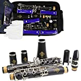 Rochix Clarinet Beginner Student Level E16 B Flat ABS Nickel Plated 17 Keys Bb Tone with 2 Berrels,Case,5 Reeds,Mouthpiece and More