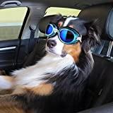 PETLESO Dog Driving Cycling Sunglasses UV Protection Waterproof Large Dog Goggles Blue