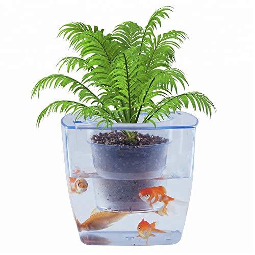 NINI Fleur d'Aquarium écologique et Poisson commun Fleur Pot Bureau Fleur, récipient de Poisson créatif Mini réservoir de Poissons ornementaux