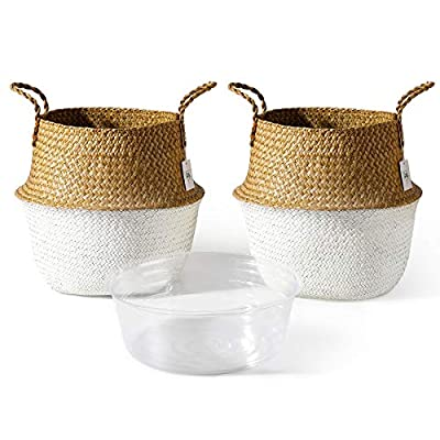 POTEY 720403 Seagrass Plant Basket - Hand Woven Belly Basket with Handles, Large Storage Laundry, Picnic, Plant Pot Cover, Home Decor and Woven Straw Beach Bag (Set of 2 Extra Large, Original+White)