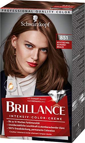 Brillance Intensiv-Color-Creme Haarfarbe 851 Mystisches Schoko-Braun Stufe 3, 3er Pack(3 x 160 ml)