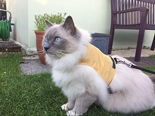 Mynwood Cat Jacket/Harness Caramel Adult Cat
