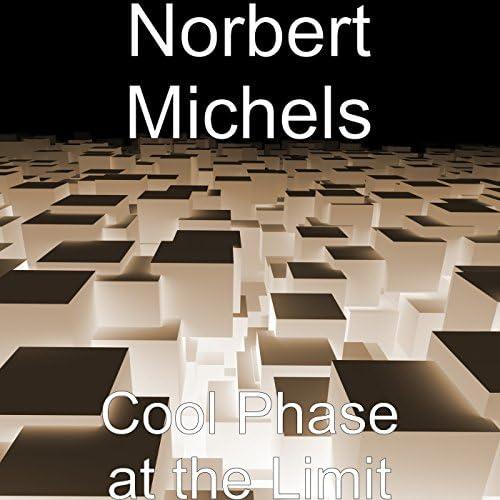 Norbert Michels
