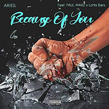 Because of You (feat. Lotta Bars & Paul Marz)