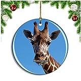 Norristown Elmwood Park Zooペンシルベニア米国クリスマスデコレーションオーナメントクリスマスツリーペンダントデコレーションシティトラベルお土産コレクション磁器2.85インチ