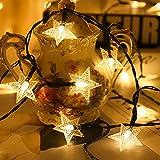 VNFWLDM Luces De Cadena, Luces De Cerezo con Energía Solar Sakura, 8 Modos, Luces De Cadena Multicolor Al Aire Libre para Navidad, Día De San Valentín, Madre ',Warm White,6 Months