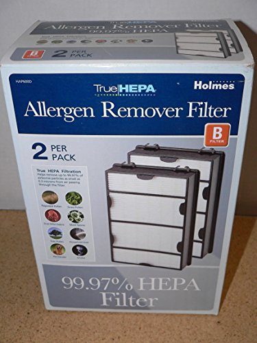 Discover Bargain Holmes True HEPA Filter HAPF600D-U2, Filter B, 2 Pack