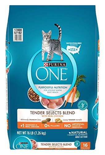 Purina ONE Natural Dry Cat Food