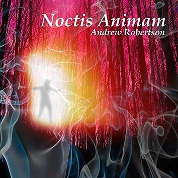 Noctis Animam