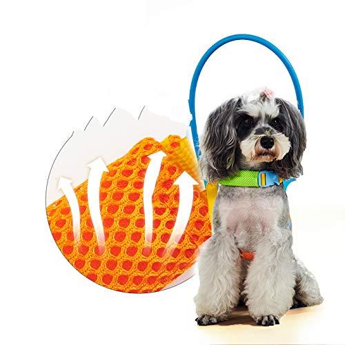 IANSISI Collar anticolisión para Mascotas ciegas, guía para Perros, Asistencia de Comportamiento de Entrenamiento para Perros pequeños y Grandes
