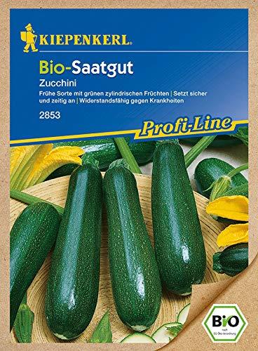 BIO - Zucchinisamen - Zucchini Partenon F1 - Saatgut von Kiepenkerl