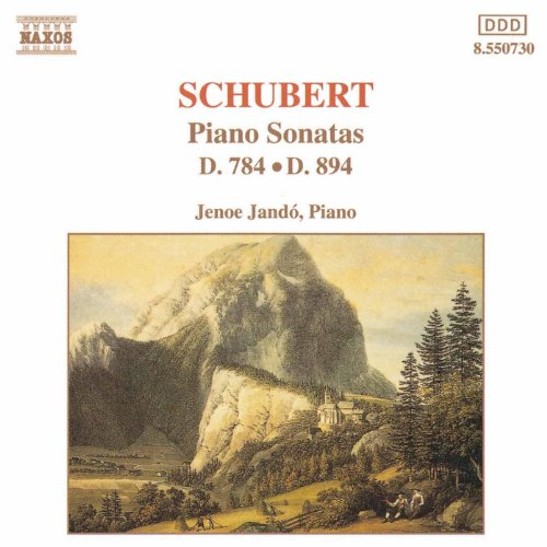 Schubert: Piano Sonatas, D. 784 And D. 894