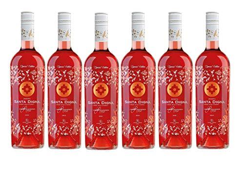 Santa Digna Rosé, Vino Rosado - 6 botellas de 75 cl, Total: 4500 ml
