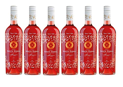 Santa Digna Rosé, Vino Rosado - 6 botellas de 75 cl, Total: 4500 ml