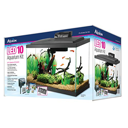 Aqueon Aquarium Starter Kit with LED Lighting...