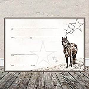 Boxenschild Stallschild Stalltafel Namensschild Pferd 'Isländer' 20x30cm Alu