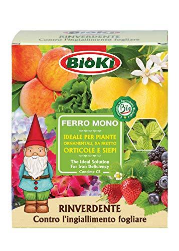 Bioki solfato di Ferro Monoidrato Naturale per Agricoltura Bio, astuccio da 900 g