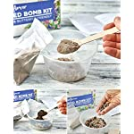 Wildflower Seed Bomb Kit - Make Your Own Bee & Butterfly Friendly Seed Balls - 100% UK Native Mix, 1,000+ Seeds with Step-by Step Instruction