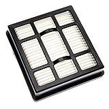 vhbw Filtro HEPA Compatibile con Ariete 2741 XForce, 2791 JetForce aspirapolvere