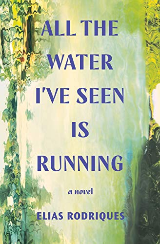 Image of All the Water I've Seen Is Running: A Novel